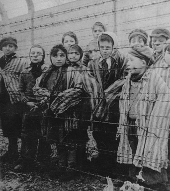How can I argue on Genocide and the Holocaust?